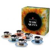Kit Marc Quinn (6 cesti espresso+6 farfurii)